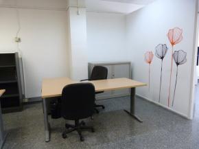 Coworking (4) Puestos de trabajo