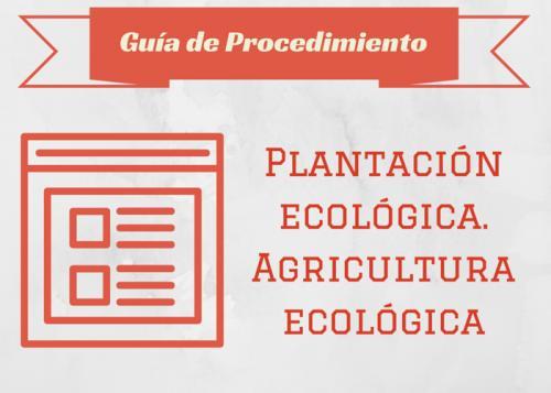Plantación ecológica. Agricultura ecológica