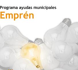 Bases Programa Empren