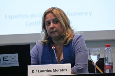 HIDMO CONSULTORES EN IMEX CV 2017