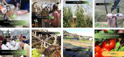 """La Red Rural Nacional selecciona 8 proyectos españoles para competir en los """"Premios de Inspiración Rural 2021"""""""